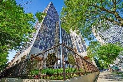 Condo/Townhouse For Sale: 345 West Fullerton Parkway #2207
