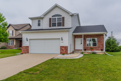 Normal Single Family Home For Sale: 1065 Duck Horn Drive