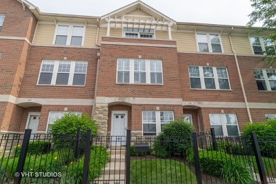 Wheaton Condo/Townhouse New: 353 West Wesley Street #353