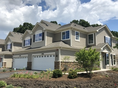 Kane County Condo/Townhouse New: 1672 Carlstedt Drive