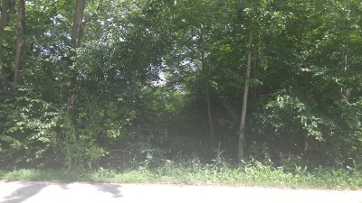 Barrington  Residential Lots & Land New: 212 Princeton Avenue