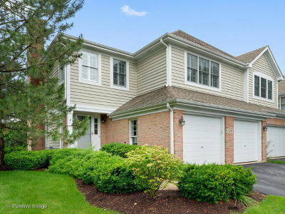 Glen Ellyn Condo/Townhouse New: 308 Roscommon Court