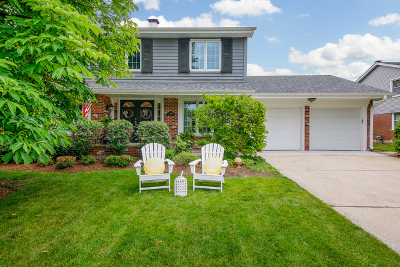 Glen Ellyn Single Family Home New: 2s155 Sheffield Road