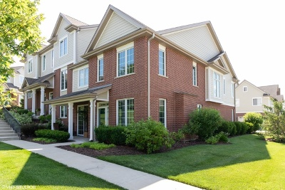 Orland Park Condo/Townhouse New: 10634 Gabrielle Lane