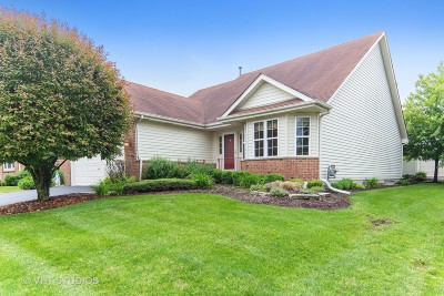 Plainfield Single Family Home For Sale: 21323 West Redwood Drive
