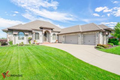 Homer Glen Single Family Home New: 15634 Jeanne Lane