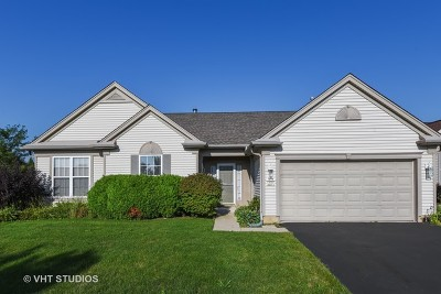 Huntley Single Family Home Re-Activated: 12505 Arlington Drive