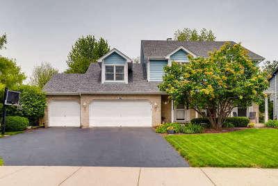 Oswego Single Family Home New: 241 Ashley Court