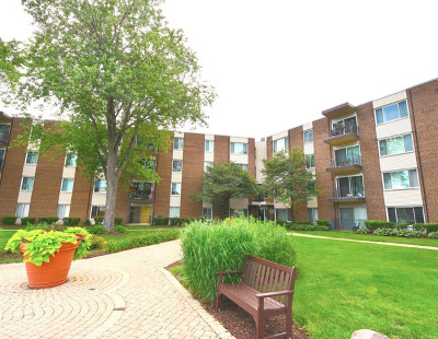 Palatine Condo/Townhouse New: 140 West Wood Street #128