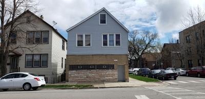 Chicago Multi Family Home New: 3329 South Lituanica Avenue