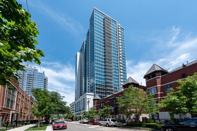 Chicago Condo/Townhouse New: 1629 South Prairie Avenue #1003