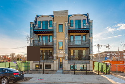 Chicago Condo/Townhouse New: 3918 South King Drive #2S