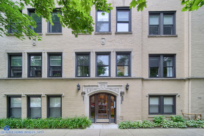 Chicago Condo/Townhouse New: 7059 North Damen Avenue #2S
