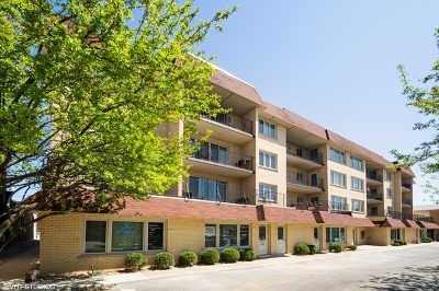 Chicago Condo/Townhouse New: 6121 North Northwest Highway #203