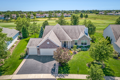 Huntley Single Family Home New: 12833 Bluebell Avenue