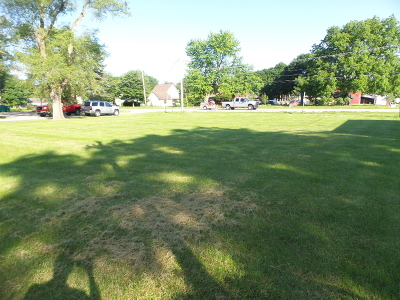 Plainfield Residential Lots & Land For Sale: 23625 West Main Street