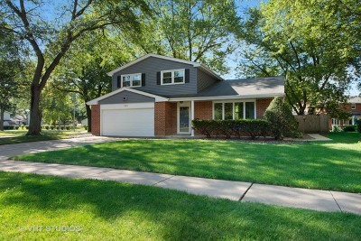 Palatine Single Family Home New: 761 East Monterey Road