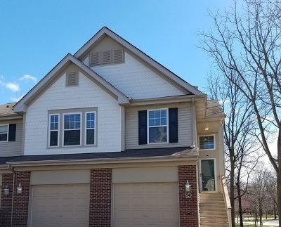 Streamwood Condo/Townhouse New: 54 Samuel Drive #13-4