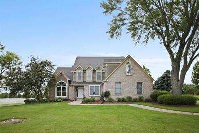 St. Charles Single Family Home For Sale: 7n224 Homeward Glen Drive