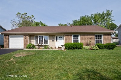 Lake Zurich Single Family Home New: 435 Old Mill Grove Road