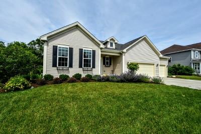 Mc Henry County Single Family Home New: 2125 Walnut Glen Boulevard