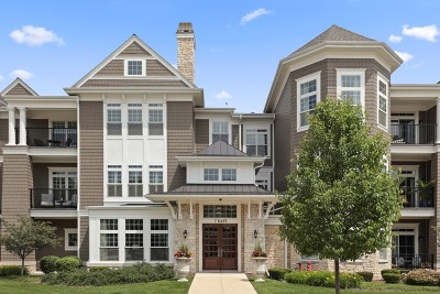 Hinsdale Condo/Townhouse New: 7 Kennedy Lane #305