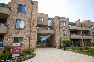 Cook County Condo/Townhouse New: 1919 Prairie Square #306