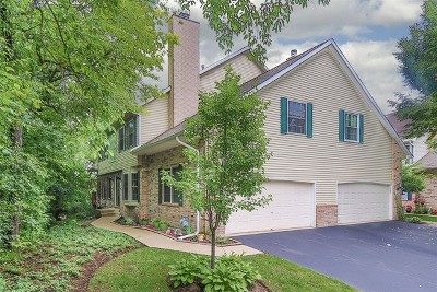 Streamwood Condo/Townhouse New: 1388 Laurel Oaks Drive