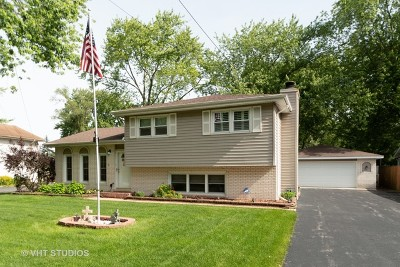 Tinley Park Single Family Home New: 6334 177th Street