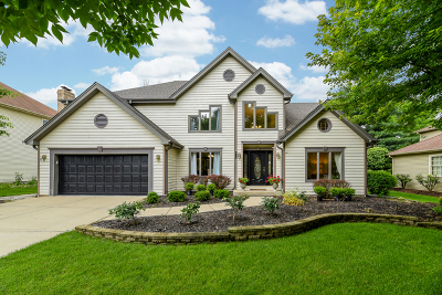 Naperville Single Family Home New: 516 Prairie Knoll Drive