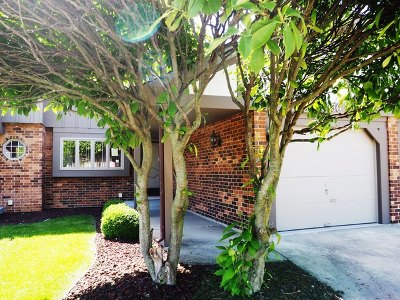 Cook County Condo/Townhouse New: 13950 Stonehenge Drive