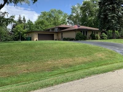 Homer Glen Single Family Home New: 13925 South Mormann Lane South