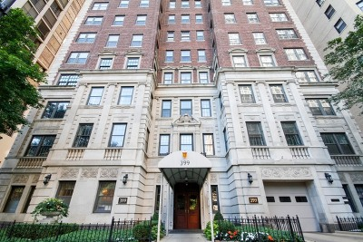 Chicago Condo/Townhouse New: 399 West Fullerton Parkway #8E