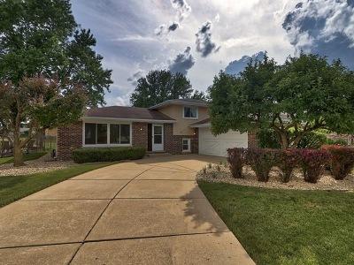 Orland Park Single Family Home New: 8817 Biloba Street