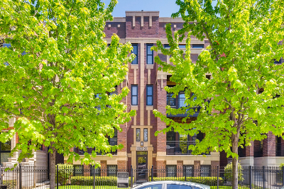 Chicago Condo/Townhouse New: 3325 North Seminary Avenue #3N