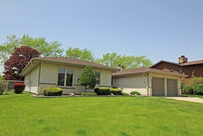 Du Page County Single Family Home New: 258 Crestwood Lane
