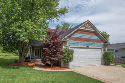 Round Lake Single Family Home For Sale: 518 North Lakewood Terrace