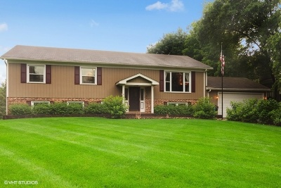 Crystal Lake Single Family Home For Sale: 139 Burning Bush Trail
