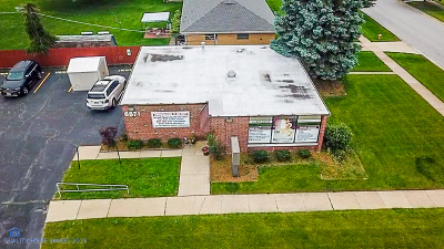 Tinley Park, Orland Park Commercial For Sale: 6871 West 171st Street