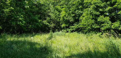 Ogle County Residential Lots & Land For Sale: 8844 West Townline Road