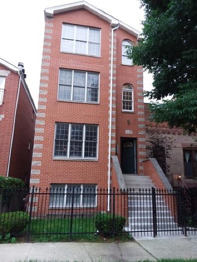 Chicago Condo/Townhouse New: 939 North Fairfield Avenue #3
