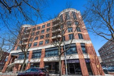 Chicago Condo/Townhouse New: 350 West Belden Avenue #310
