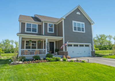 Lemont Single Family Home For Sale: 13697 Anne Drive