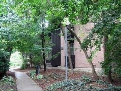Lisle Condo/Townhouse New: 1613 Maple Terrace #1K