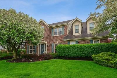 Orland Park Single Family Home New: 18001 Arthur Drive