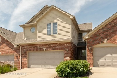 Mokena Condo/Townhouse New: 12516 Steamboat Springs Drive