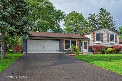 Lake Zurich Single Family Home New: 1060 Heartwood Lane