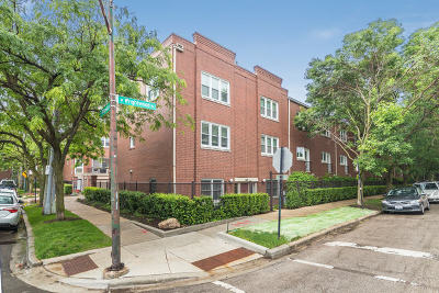 Chicago Condo/Townhouse New: 1781 West Altgeld Street #A