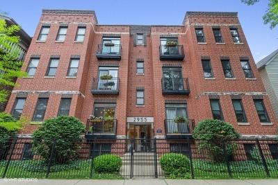 Chicago Condo/Townhouse New: 2955 North Racine Avenue #1A