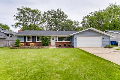 Schaumburg Single Family Home New: 613 South Salem Drive